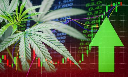 CanaFarma Trading Volume Mirrors CBD Industry Trek Higher