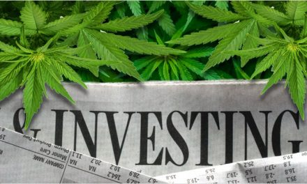 Cannabis, Hemp and CBD Sector Solid Through Covid -19 Selloff