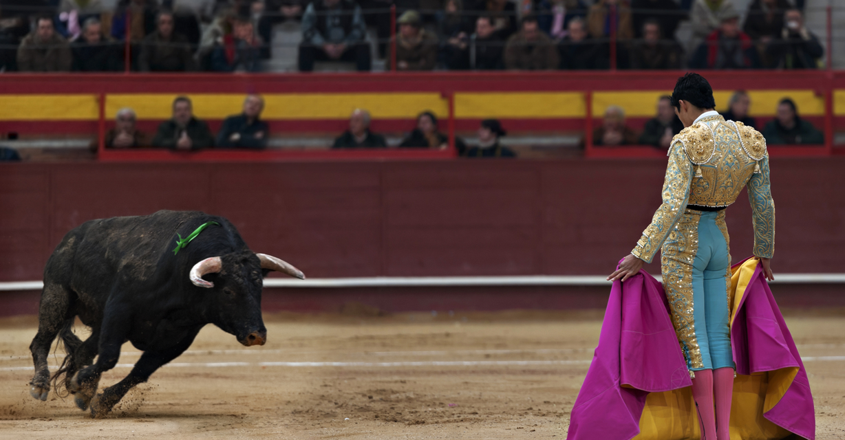 Canafarama (CSE: CNFA) In Spectacular Bull Fight Against Coronacrash Market Today