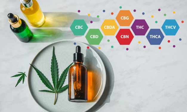 CanaFarma Full Spectrum CBD Three Times More Powerful Than Popular CBD